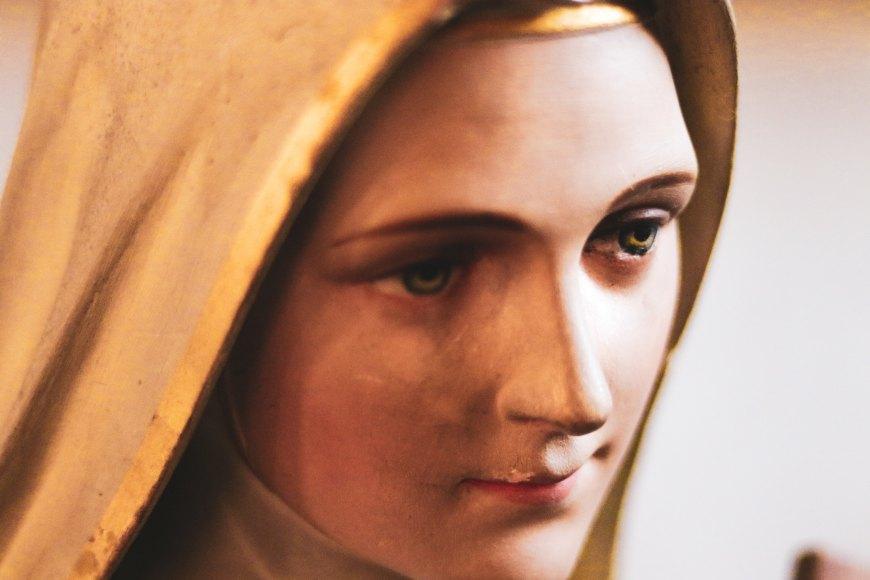 david papillon Marie catholique